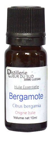 bergamote-copie